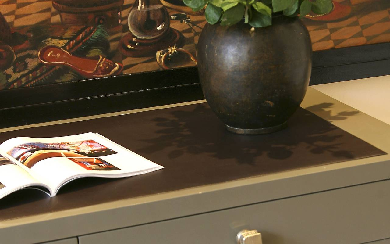 plante verte sur meuble gris